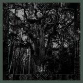 Enisum – Seasons of Desolation