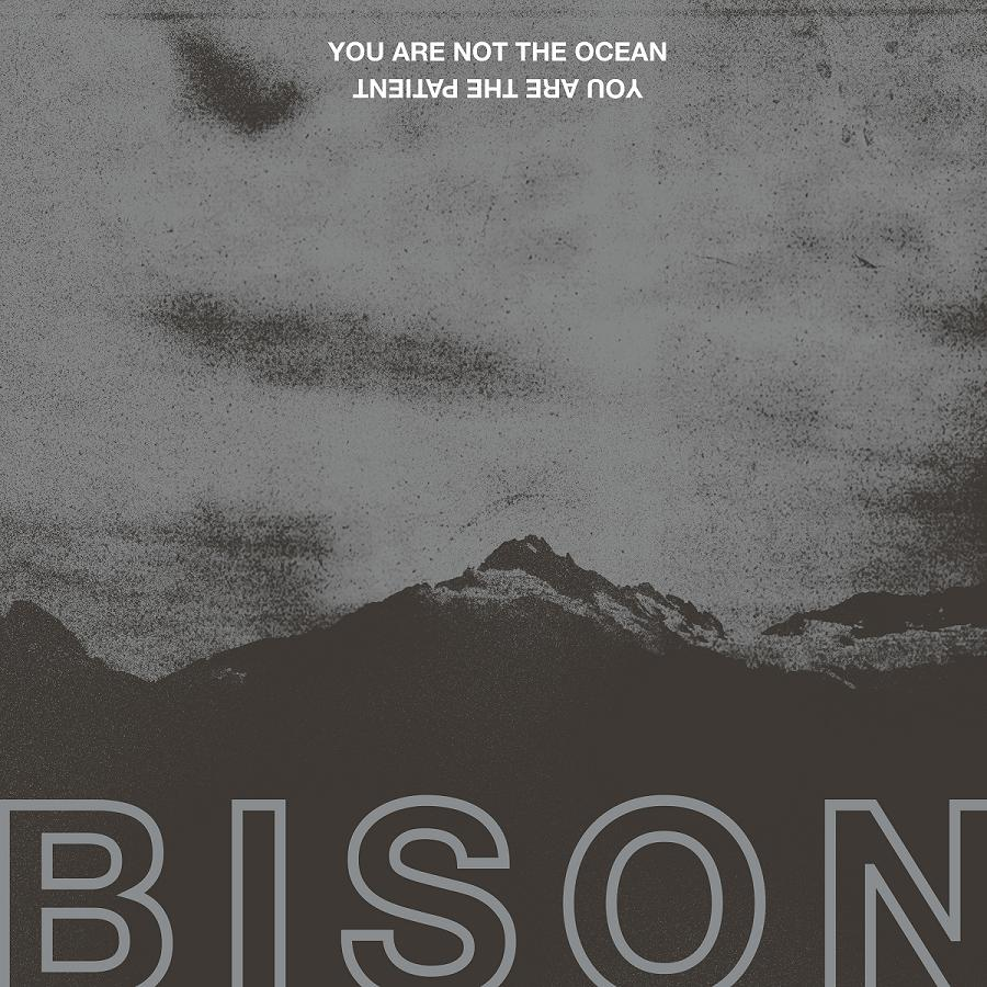 Album art for BISON's You Are Not The Ocean You Are The Patient.