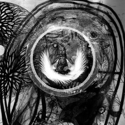 Sonance-Blackflower
