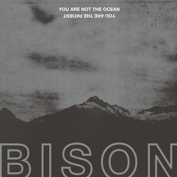 Bison- You Are Not The Ocean You Are The Patient